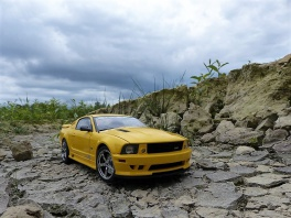 Ford Mustang - Saleen S281